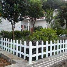 绍兴PVC草坪护栏尺寸,PVC道路护栏图片