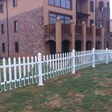 吉林精巧草坪护栏设计合理,草坪围栏图片