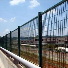 沈阳生产护栏网质量保证图片