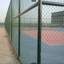 北京体育场围网用途,足球场围网图片
