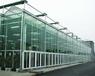 承接西宁海东海北果洛玉树地区蔬菜大棚育苗室花卉大棚生态餐厅
