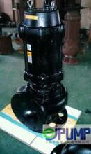 80JYWQ65-1200-7.5自动搅匀潜水排污泵图片