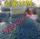 铅丝笼洪坝防护-铅丝笼安装-锌铝合金铅丝笼