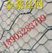 供应多种规格石笼网铅丝笼生态格宾网铅丝笼厂家