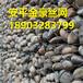 金豪石笼网供应商价格生态防护格宾网