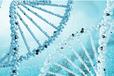 基因检测医疗界的新科技