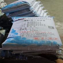 江苏泰州市_空鼓专用环氧树脂_每日报价图片