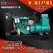40KW广西玉柴YC4D60-D21柴油发电机组