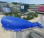 鲸鱼岛租赁鲸鱼岛出租