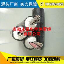 安徽永昌伴热采样管FHT-D42-B1Φ8-40WΦ6Φ8Φ10Φ12采样管缆电伴热图片