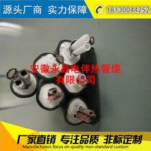 安徽永昌CEMS伴热管线烟气伴热取样管采样管缆伴热管烟气净化LNFTH-D42-D2-145图片