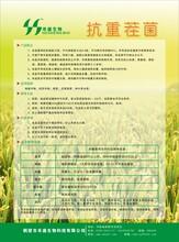 微生物制剂生物功能菌有机肥功能性菌剂生物功能菌羊粪有机肥腐熟剂土壤调理剂