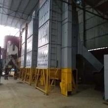 供应LKH-60新型小麦烘干机图片
