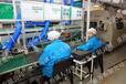 加拿大电子厂建筑工正规工作签可申请绿卡