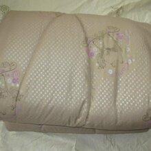高档紫色印花驼绒被厂家直销批发定做驼绒被家纺赠品礼品加厚保暖被