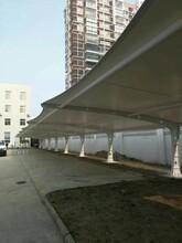 上海溢利膜结构