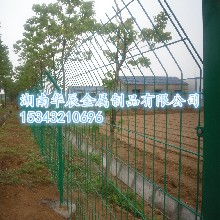 专业生产双边丝护栏网
