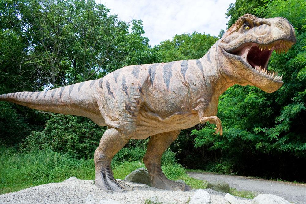恐龙的分类