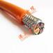 柔性屏蔽伺服电缆