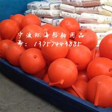 日照低密度浮子保山河道挂网浮球吉安河流专用警示浮漂图片