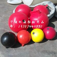 宁波滚塑塑料浮球泉州挂网浮子出售昆明海面专用浮体图片