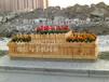 绿植盆栽种植容器高品质花箱实木防腐可定制