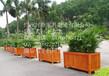 优质花箱实木玻璃钢花钵花盆花架供应采购定制