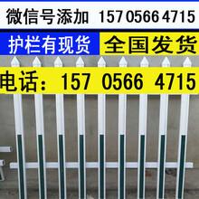 三明三元区pvc护栏、塑钢护栏图片