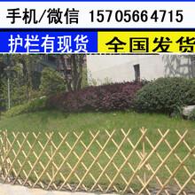 阜阳市颍东区绿化围栏花草栅栏色彩鲜亮图片