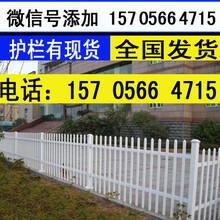 台州市温岭市小区围栏围栏栅栏草坪护栏,的优点,可参考图片