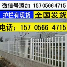 市场走向江西省抚州市pvc隔离护栏pvc围墙护栏图片