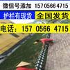 六安金寨县pvc围墙栏杆pvc护栏草坪绿化带