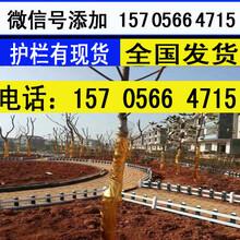 徐州市铜山区绿化栏杆塑料栅栏采用原生料图片