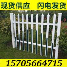 南昌青云谱绿化围栏绿化栅栏厂家价格图片