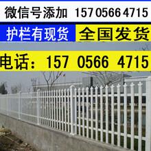 郴州苏仙区pvc花坛护栏pvc花坛围栏怎样图片
