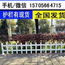 石台县绿化围栏绿化栅栏价格产量高图片