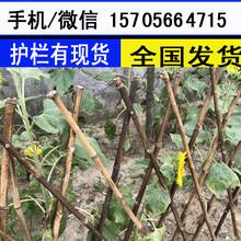离石区PVC庭院护栏pvc庭院围栏图片