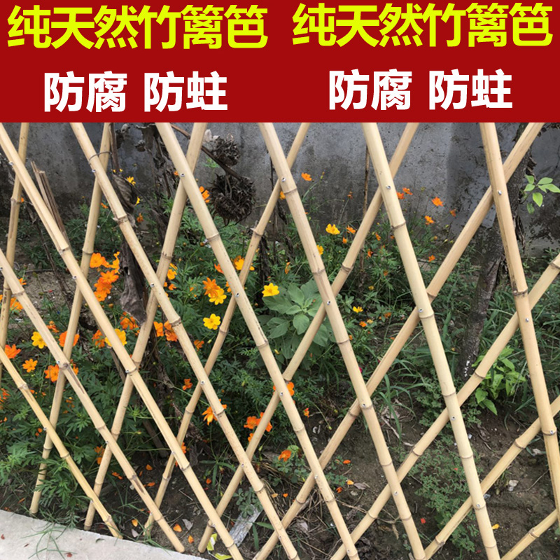 农村幼儿园室外绿化布置图片