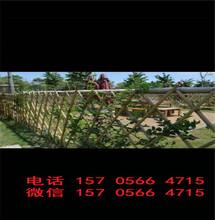 青山区pvc河道栅栏pvc河道栏杆哪家好图片