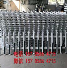 中牟县铁艺pvc绿化围墙围栏栅栏招商图片