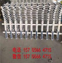 大同县pvc塑钢护栏围栏栅栏花栏供货商图片