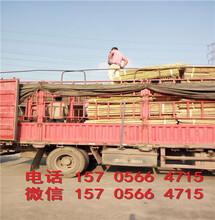 桂林兴安塑钢栏杆小区护栏量大送货图片