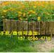 长汀县pvc交通栏PVC花园护栏
