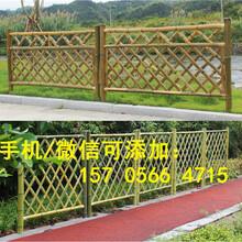 郎溪县pvc草坪护栏pvc草坪围栏质量怎样图片