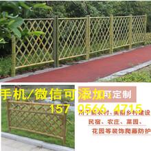 鹤壁市山城区PVC塑钢护栏围栏花园小区草坪围栏厂家供货图片
