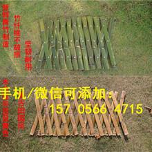 衡水枣强县竹篱笆花园围栏市场走向图片
