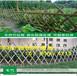 德化县PVC塑钢围墙护栏学校围栏