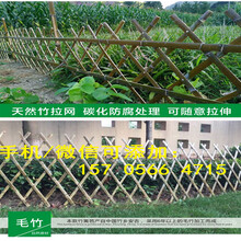 慈溪市塑钢护栏塑钢围栏厂批发图片