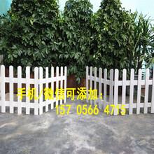 殷都区花草栏杆花池护栏质量怎样图片