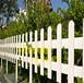 同安区市政道路塑料护栏塑钢围挡挡板